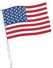 AMERICAN ANTENNA FLAG-0