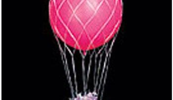 BALLOON NET 3'-0