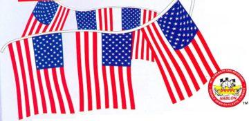60 AMERICAN FLAG PENNANT-0