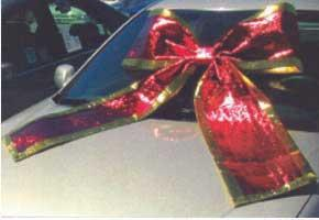 SHINY CAR BOW- SILVER-0