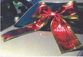 SHINY CAR BOW- SILVER-0